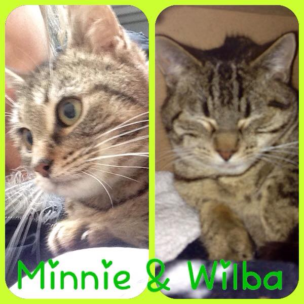 Minnie & Wilba